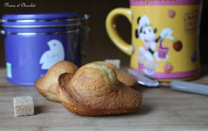 Homemade…Madeleines