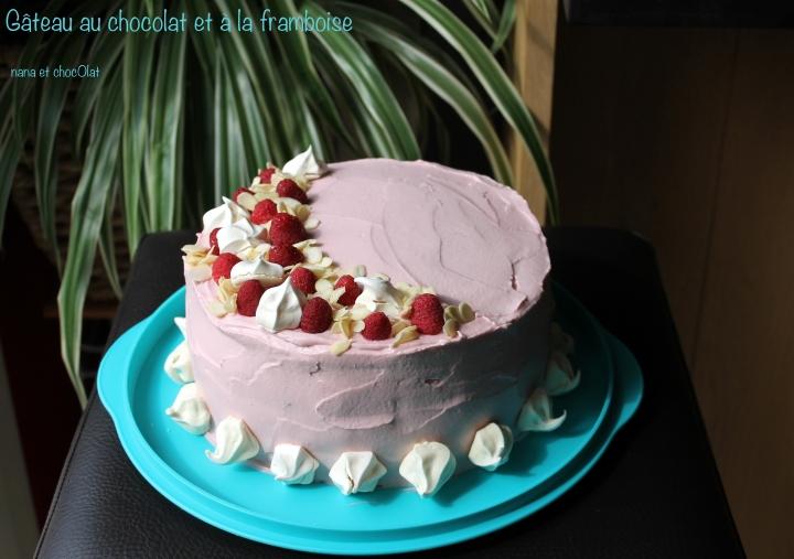 Gros Gâteau au chocolat et à la  framboise pour la Fête des mamans ( comme un layercake)