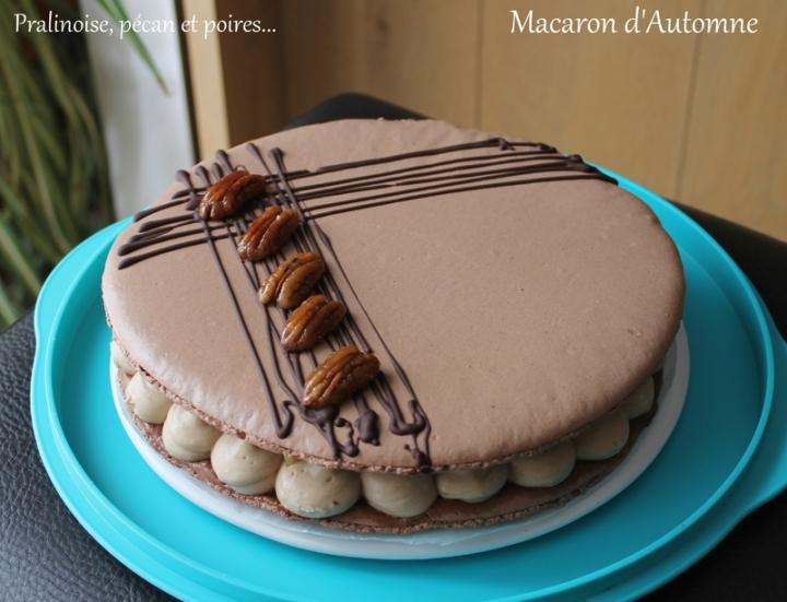 Macaron d'automne ( Crème diplomate à la pralinoise, compotée de poire et noix de pécancaramélisées)