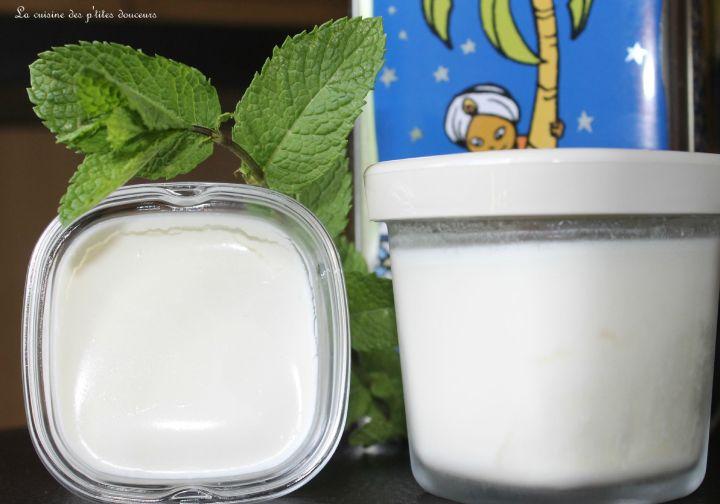 Yaourts à la menthe, mascarpone et sirop d'agave ( dans la multi délices oupas)