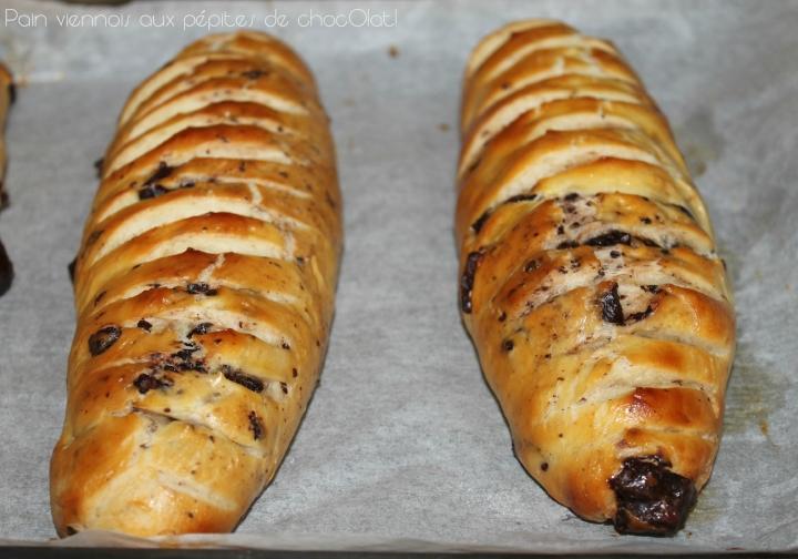 Pains viennois aux pépites de chocolat d'EricKayser