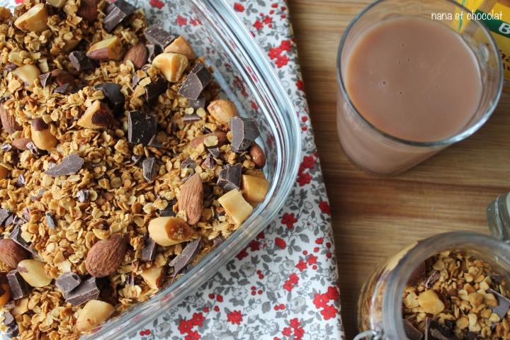 Granola maison aux amandes, noix du Brésil et pépites dechocolat