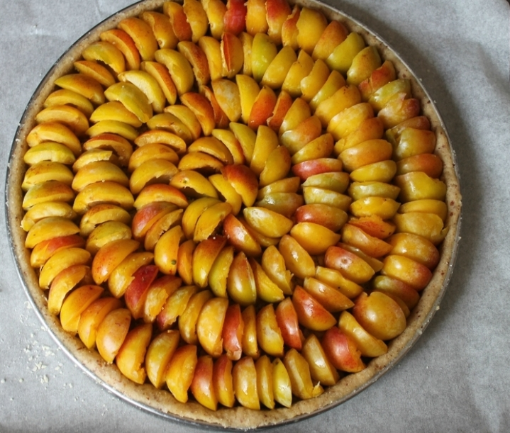 tarte mirabelles 2
