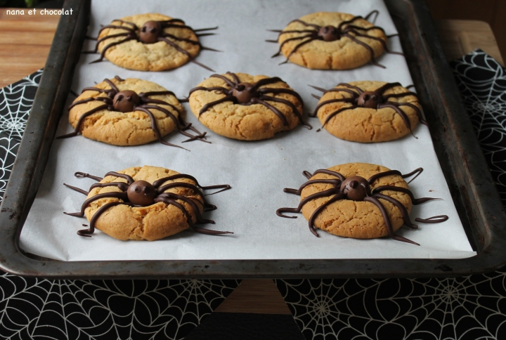 spider cookies4
