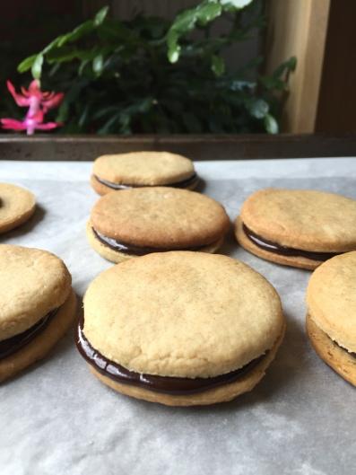 Biscuits ronds fourrés au chocolat ( recette sansoeufs)
